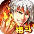 全民格斗OL iOS版