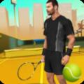 真实网球2017