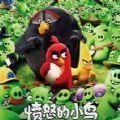 愤怒的小鸟电影完整版