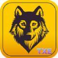狼人游戏大全手机版