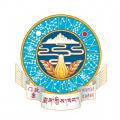 藏医药大辞典