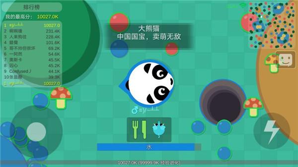 丛林大作战大熊猫后面是什么动物 大熊猫后面动物介绍[图]