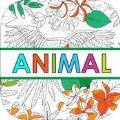动物多彩游戏