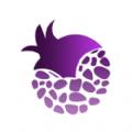 紫石榴应用商城app