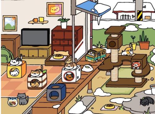 猫咪后院哪个猫爬架最好? 猫爬架最优选择推荐[图]