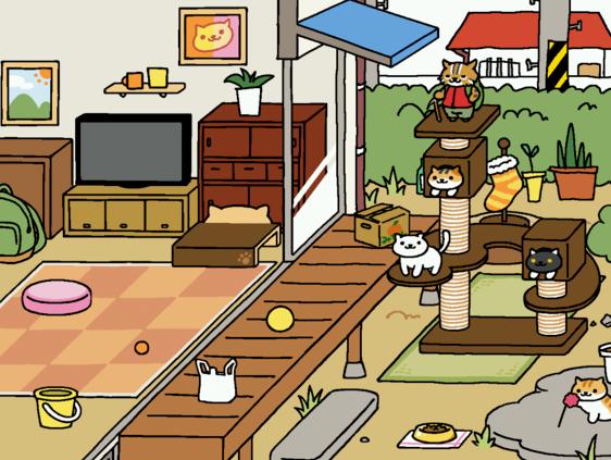 猫咪后院怎么拍全景照片? 拍全景设置方法攻略详情一览[多图]