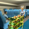 飞机空姐模拟器游戏