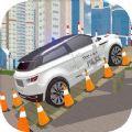 停车先生真正的停车场游戏安卓版 v1.0